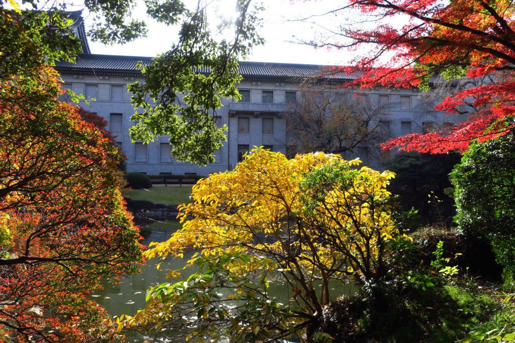 東京国立博物館の池