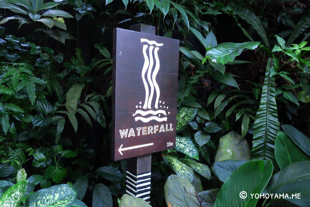 jurong bird park - waterfall aviary