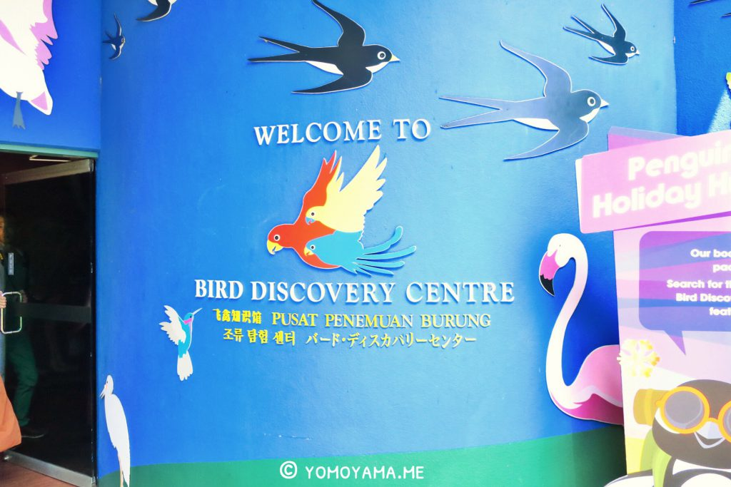 jurong bird park - bird discovery center