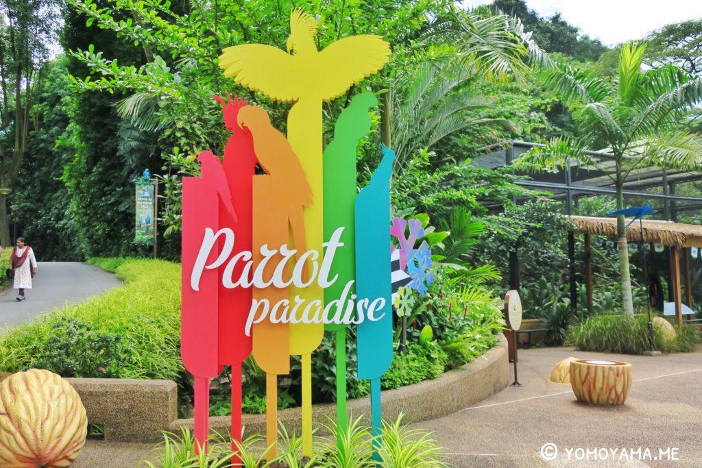 jurong bird park - parrot paradise