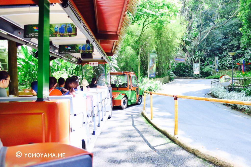 jurong bird park tram