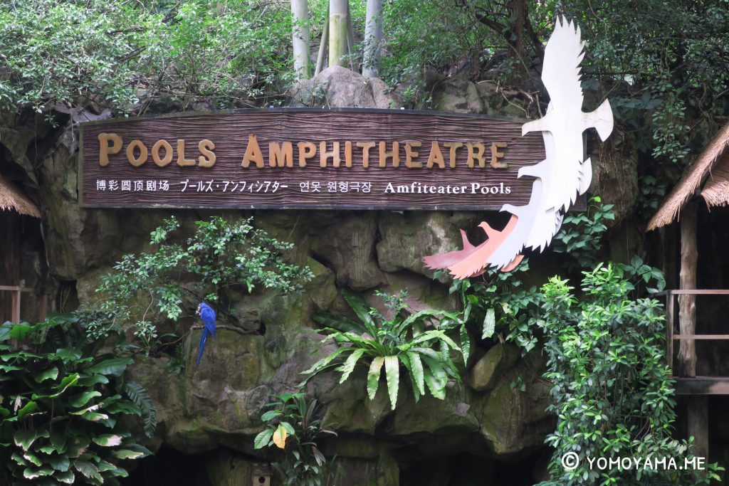 jurong bird park - pools amphitheatre