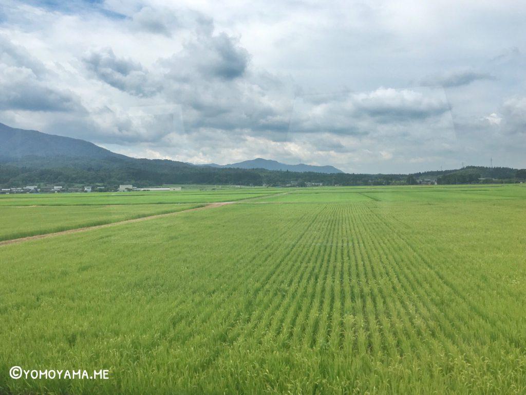 青春18きっぷ旅 新潟 - 山形 車両からの風景