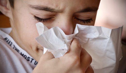 つらい花粉症、海外に行くと治るって本当?!シンガポールで1年過ごした実体験をご紹介!