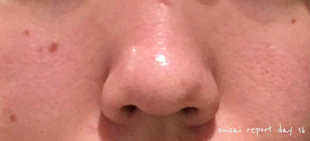 suicai 酵素洗顔レポート16日目
