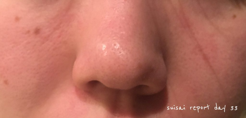 suisai 酵素洗顔レポート最終日
