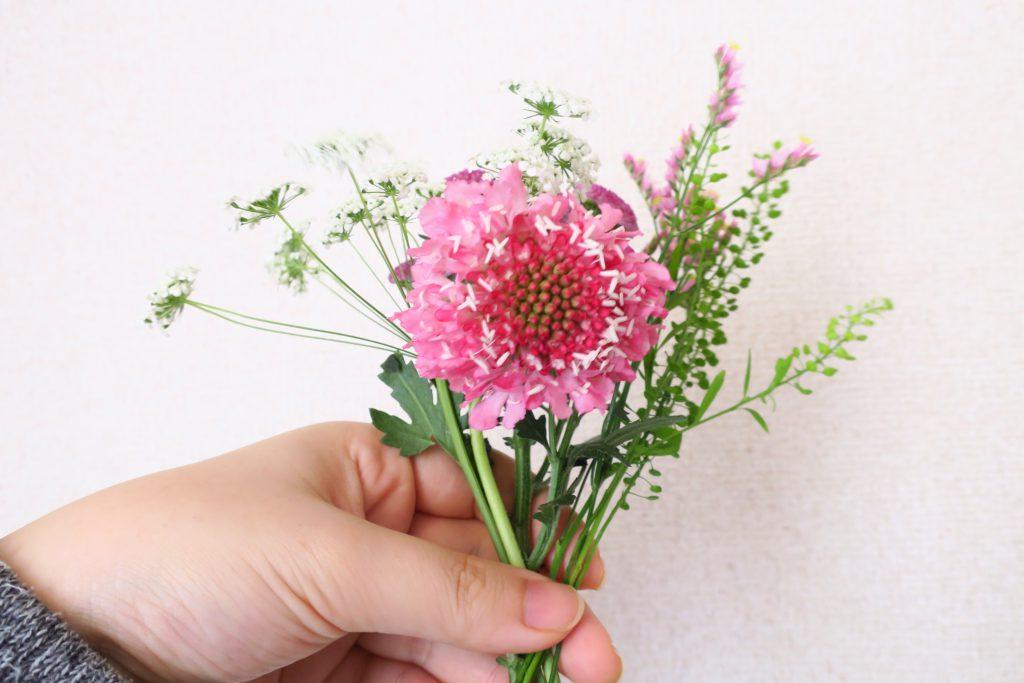 2回目のお届け後すぐのお花「FLOWER」