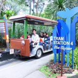 bird park tram